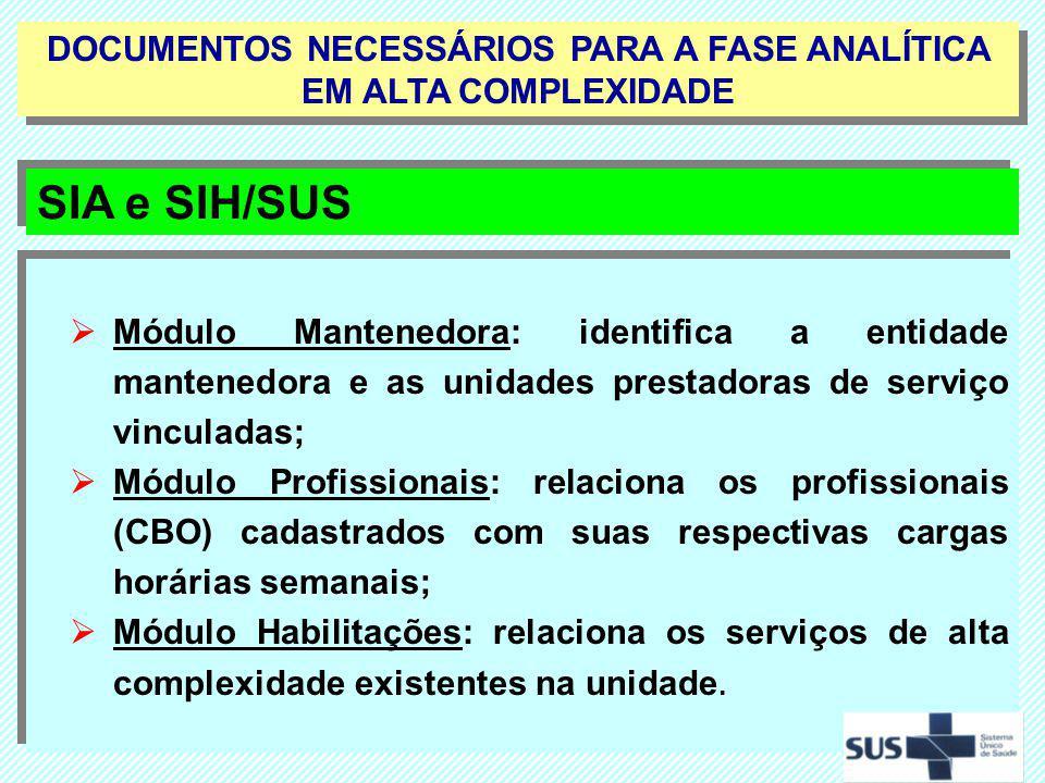 Módulo Mantenedora: identifica a entidade mantenedora e as unidades prestadoras de serviço vinculadas; Módulo Profissionais: relaciona os profissionai
