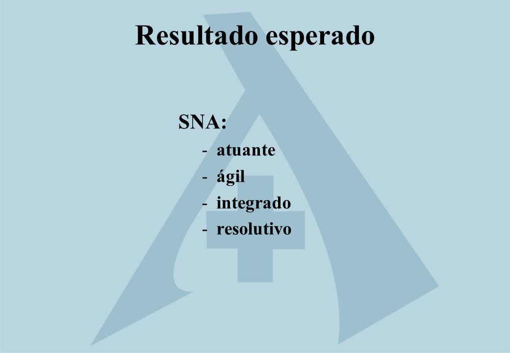 Resultado esperado SNA: -atuante -ágil -integrado -resolutivo