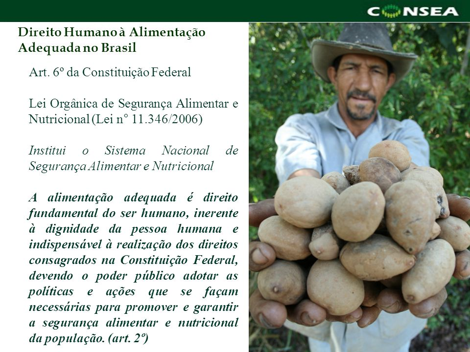 Art. 6º da Constituição Federal Lei Orgânica de Segurança Alimentar e Nutricional (Lei n° 11.346/2006) Institui o Sistema Nacional de Segurança Alimen