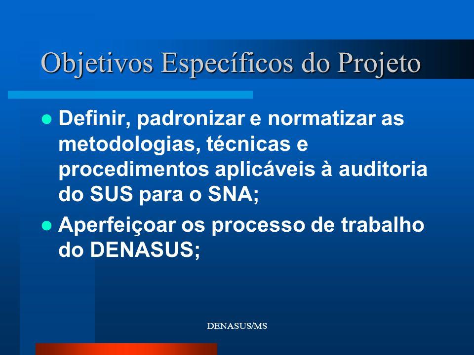DENASUS/MS Definir, padronizar e normatizar as metodologias, técnicas e procedimentos aplicáveis à auditoria do SUS para o SNA; Aperfeiçoar os process