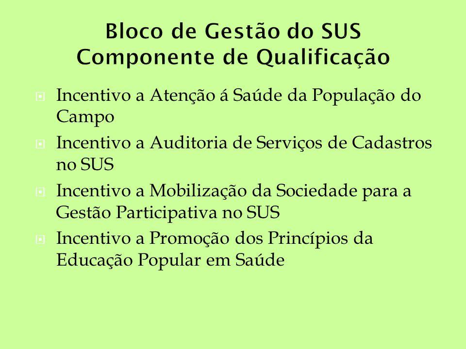 Incentivo a Atenção á Saúde da População do Campo Incentivo a Auditoria de Serviços de Cadastros no SUS Incentivo a Mobilização da Sociedade para a Ge