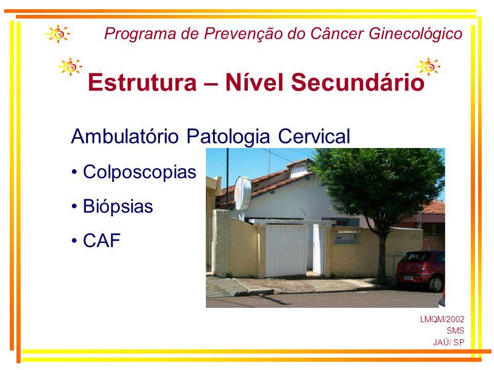 LMQM/2002 SMS JAÚ/ SP Programa de Prevenção do Câncer Ginecológico Estrutura – Nível Secundário Ambulatório Patologia Cervical Colposcopias Biópsias C