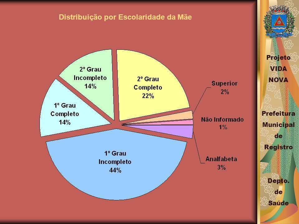 Distribuição por Escolaridade da Mãe Projeto VIDA NOVA Prefeitura Municipal de Registro Depto.