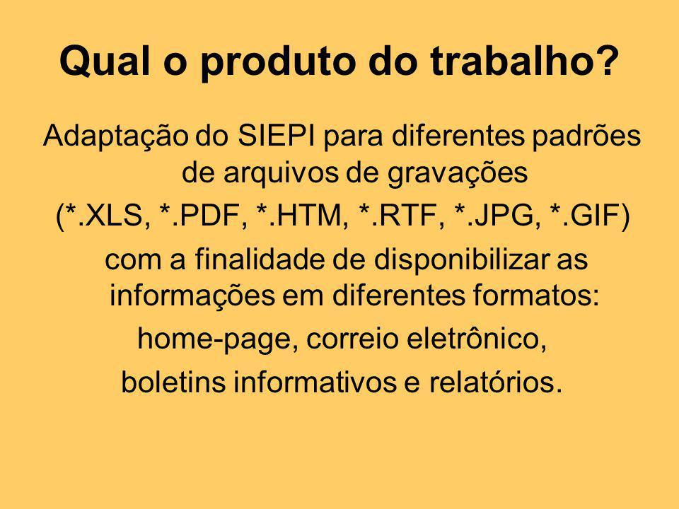 Adaptação do SIEPI para diferentes padrões de arquivos de gravações (*.XLS, *.PDF, *.HTM, *.RTF, *.JPG, *.GIF) com a finalidade de disponibilizar as i