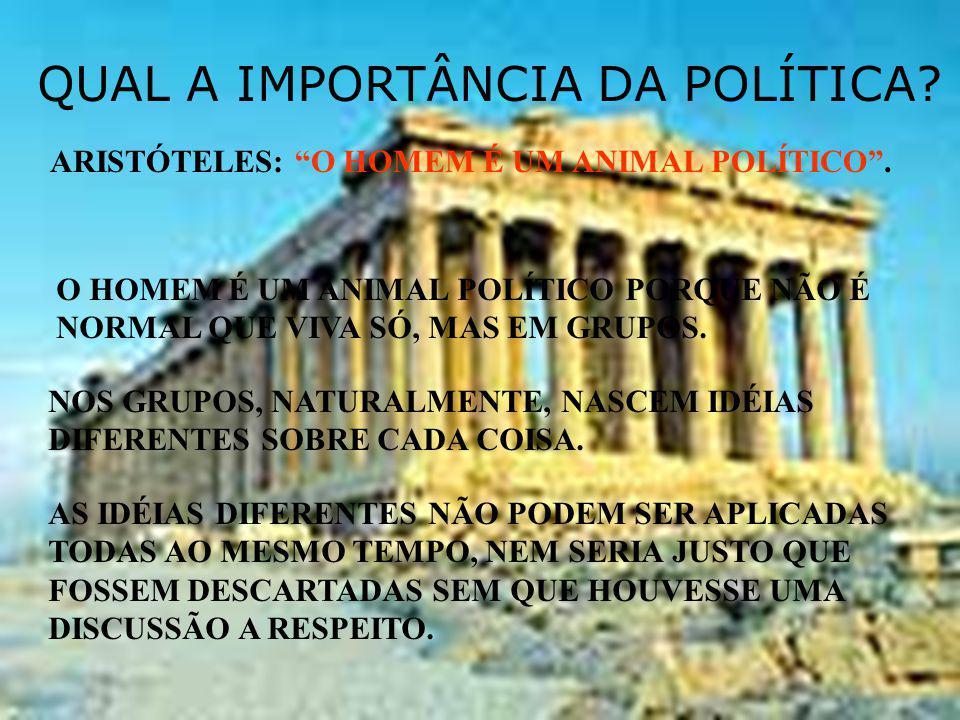 QUAL A IMPORTÂNCIA DA POLÍTICA.ARISTÓTELES: O HOMEM É UM ANIMAL POLÍTICO.