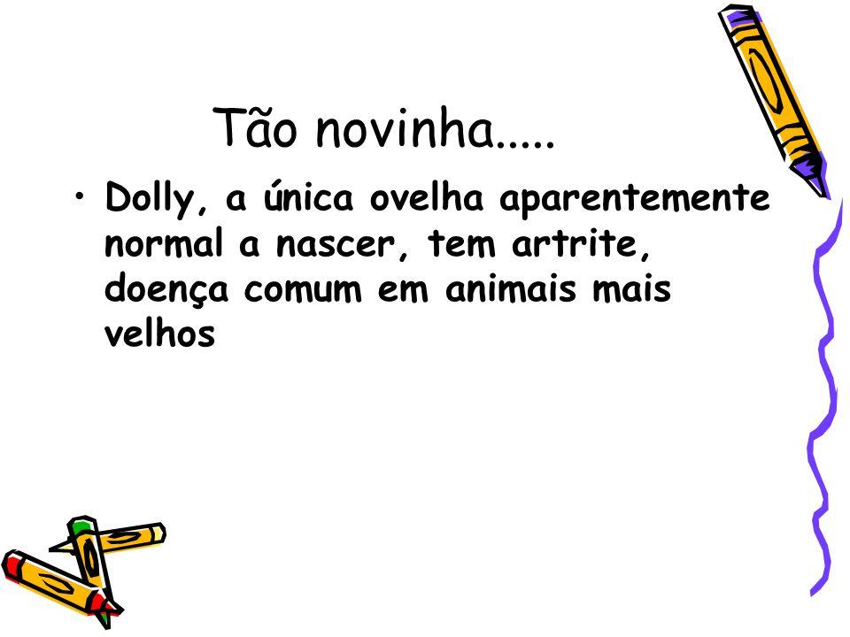 Tão novinha..... Dolly, a única ovelha aparentemente normal a nascer, tem artrite, doença comum em animais mais velhos