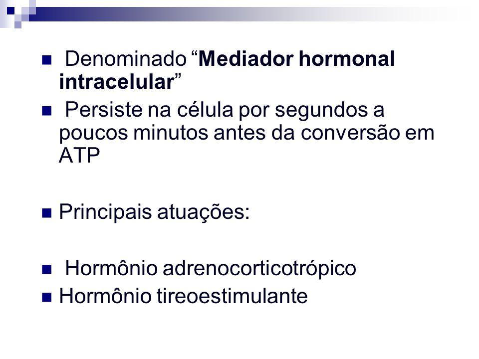 Denominado Mediador hormonal intracelular Persiste na célula por segundos a poucos minutos antes da conversão em ATP Principais atuações: Hormônio adr