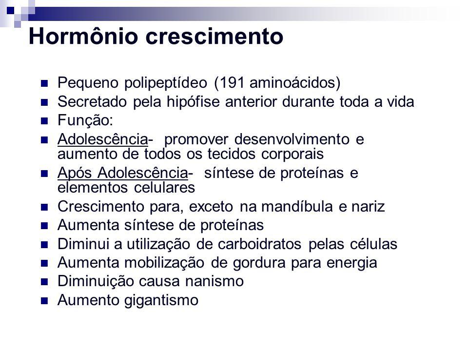 Hormônio crescimento Pequeno polipeptídeo (191 aminoácidos) Secretado pela hipófise anterior durante toda a vida Função: Adolescência- promover desenv