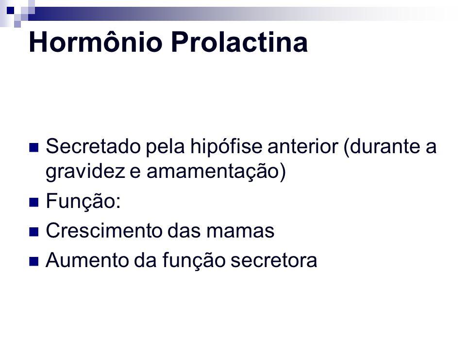 Hormônio Prolactina Secretado pela hipófise anterior (durante a gravidez e amamentação) Função: Crescimento das mamas Aumento da função secretora