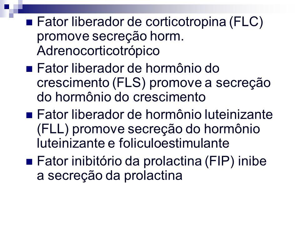 Fator liberador de corticotropina (FLC) promove secreção horm. Adrenocorticotrópico Fator liberador de hormônio do crescimento (FLS) promove a secreçã