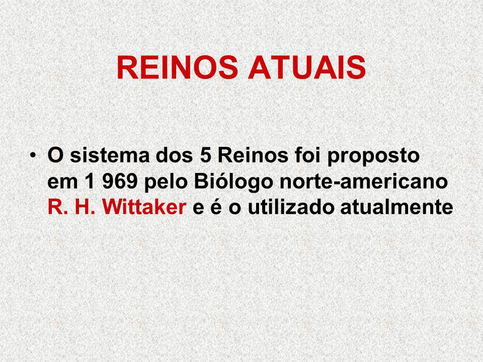 REINOS ATUAIS O sistema dos 5 Reinos foi proposto em 1 969 pelo Biólogo norte-americano R. H. Wittaker e é o utilizado atualmente