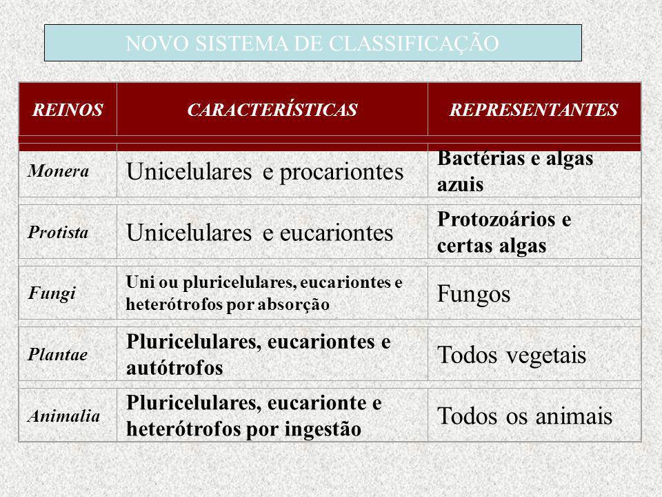 REINOSCARACTERÍSTICASREPRESENTANTES Monera Unicelulares e procariontes Bactérias e algas azuis Protista Unicelulares e eucariontes Protozoários e cert