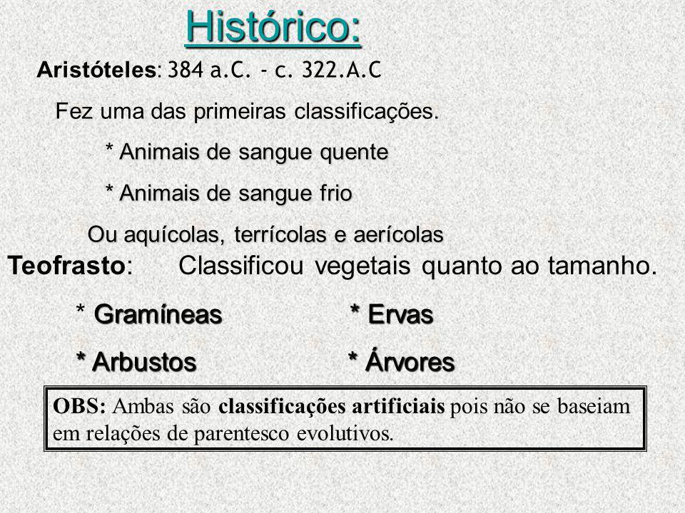 Histórico: Aristóteles: 384 a.C. - c. 322.A.C Fez uma das primeiras classificações. Animais de sangue quente * Animais de sangue quente * Animais de s