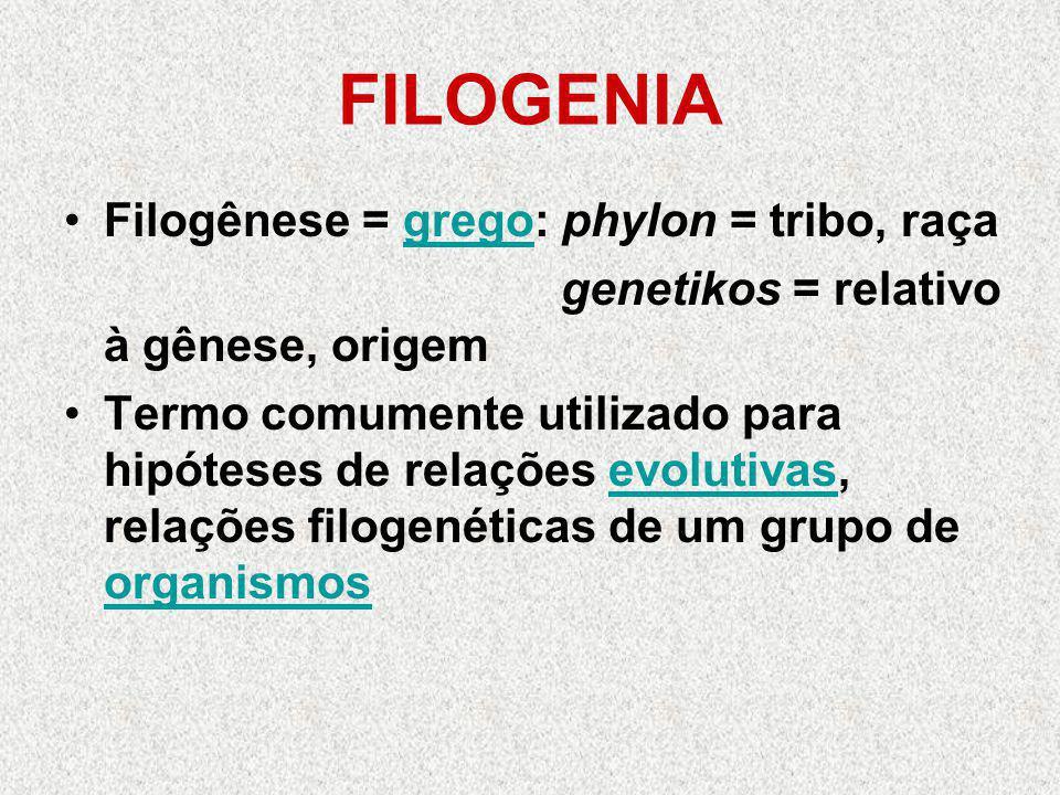 FILOGENIA Filogênese = grego: phylon = tribo, raçagrego genetikos = relativo à gênese, origem Termo comumente utilizado para hipóteses de relações evolutivas, relações filogenéticas de um grupo de organismosevolutivas organismos