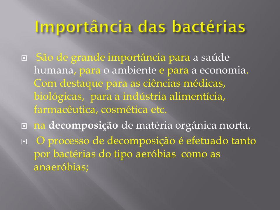 São de grande importância para a saúde humana, para o ambiente e para a economia. Com destaque para as ciências médicas, biológicas, para a indústria