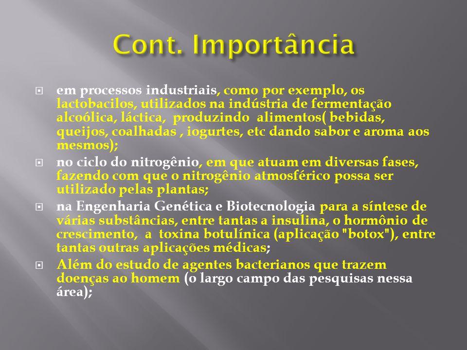 em processos industriais, como por exemplo, os lactobacilos, utilizados na indústria de fermentação alcoólica, láctica, produzindo alimentos( bebidas,