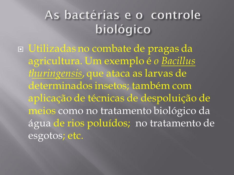Utilizadas no combate de pragas da agricultura. Um exemplo é o Bacillus thuringensis, que ataca as larvas de determinados insetos; também com aplicaçã