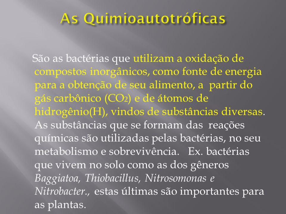 A maioria das espécies bacterianas apresenta nutrição quimioheterotróficas, isto é, a fonte de energia e a de átomos de carbono são moléculas orgânicas que a bactéria ingere como alimento.