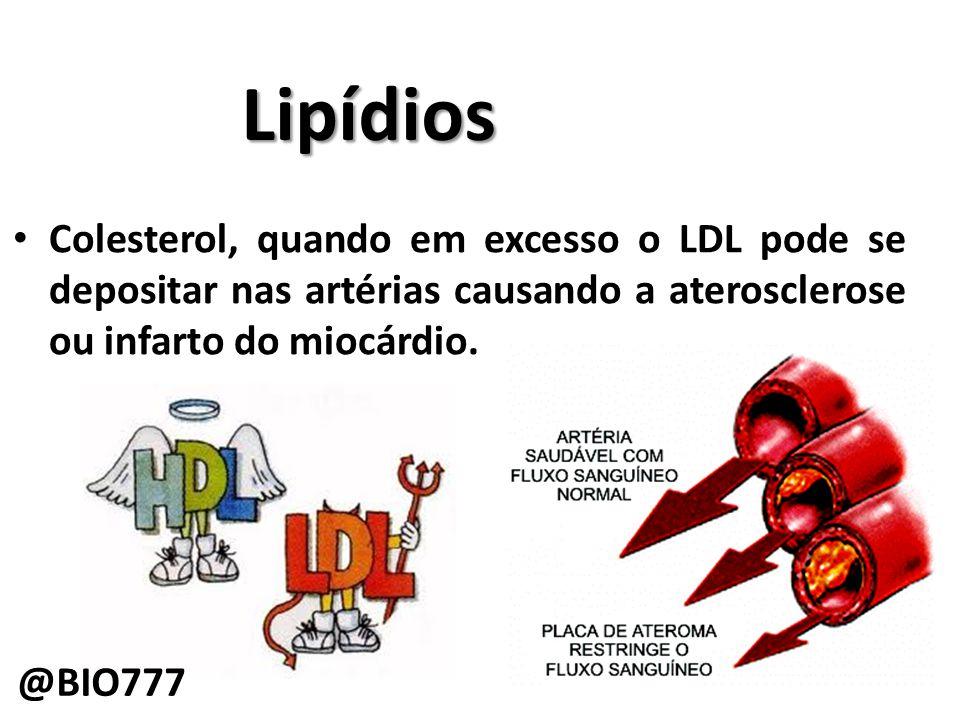 Lipídios Colesterol, quando em excesso o LDL pode se depositar nas artérias causando a aterosclerose ou infarto do miocárdio.