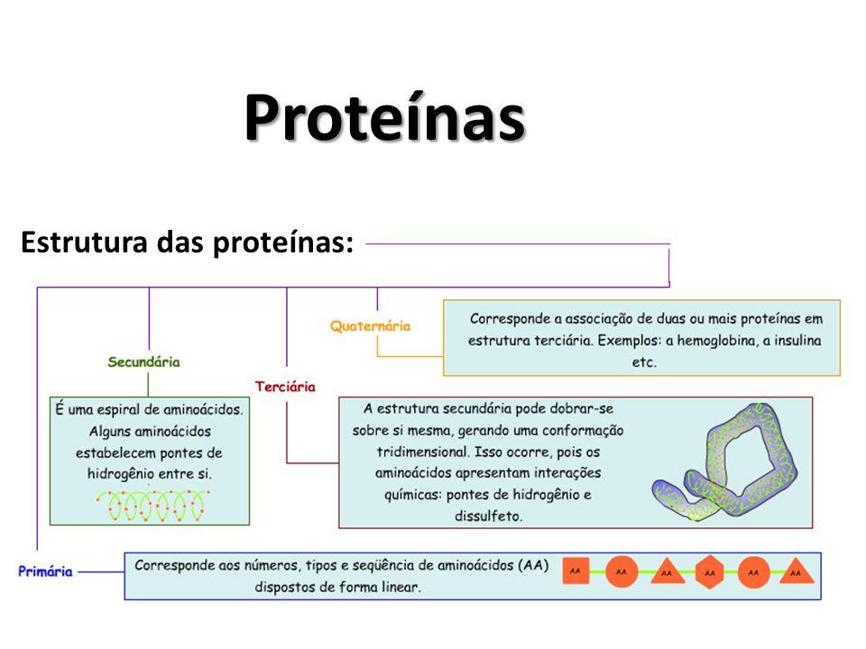 Proteínas Estrutura das proteínas: