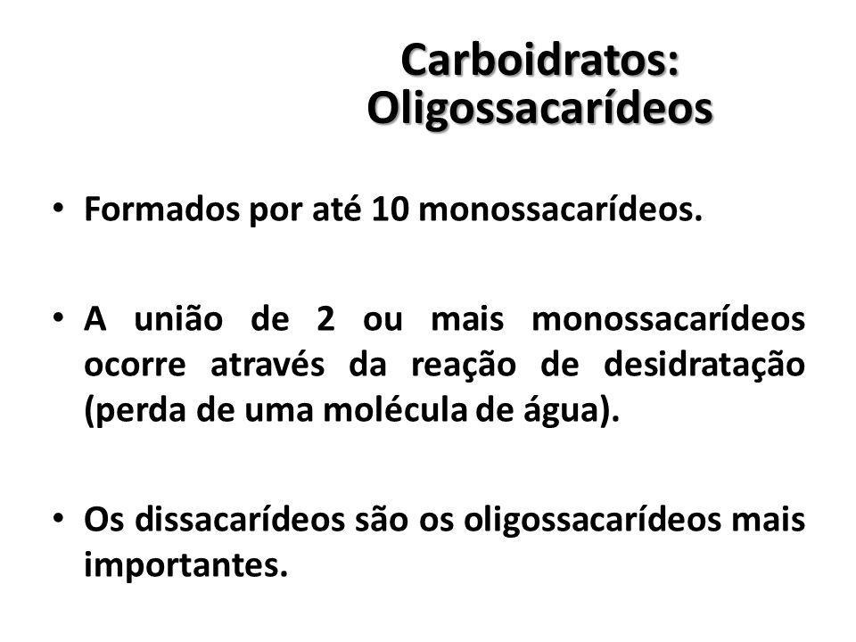 Carboidratos:Oligossacarídeos Formados por até 10 monossacarídeos.