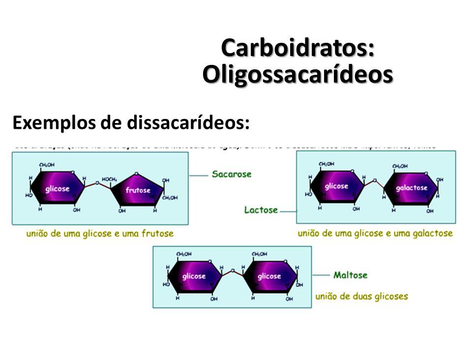 Carboidratos:Oligossacarídeos Exemplos de dissacarídeos: