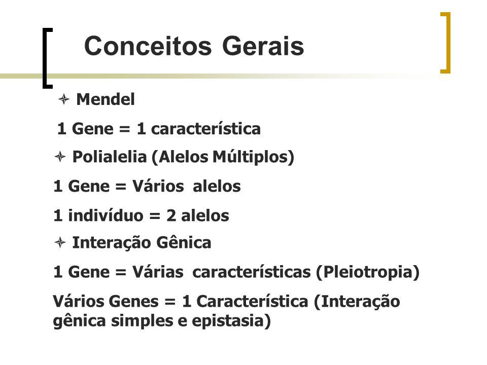 Conceitos Gerais Mendel 1 Gene = 1 característica Interação Gênica 1 Gene = Várias características (Pleiotropia) Vários Genes = 1 Característica (Inte