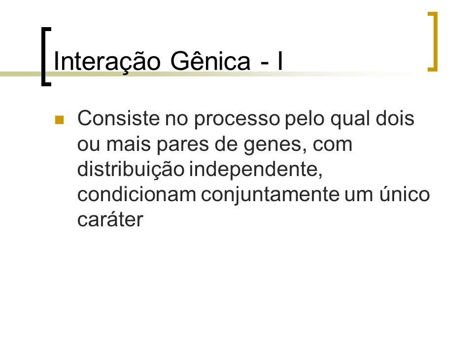 Interação Gênica - I Consiste no processo pelo qual dois ou mais pares de genes, com distribuição independente, condicionam conjuntamente um único car