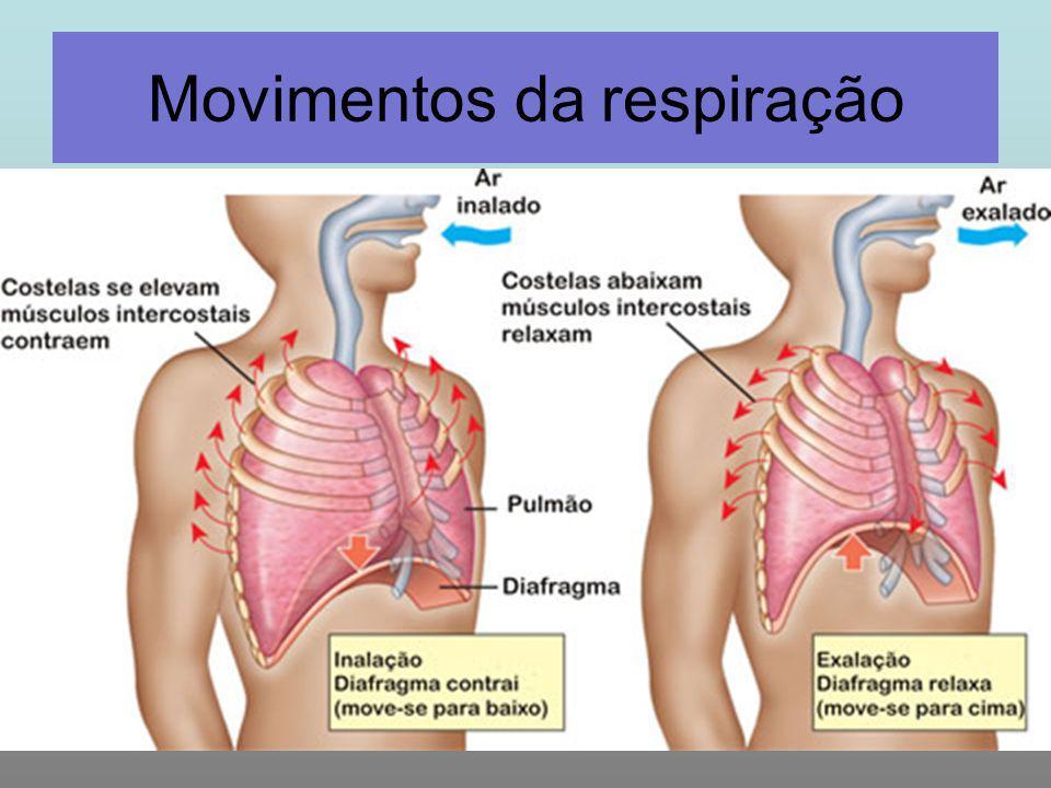 Movimentos da respiração