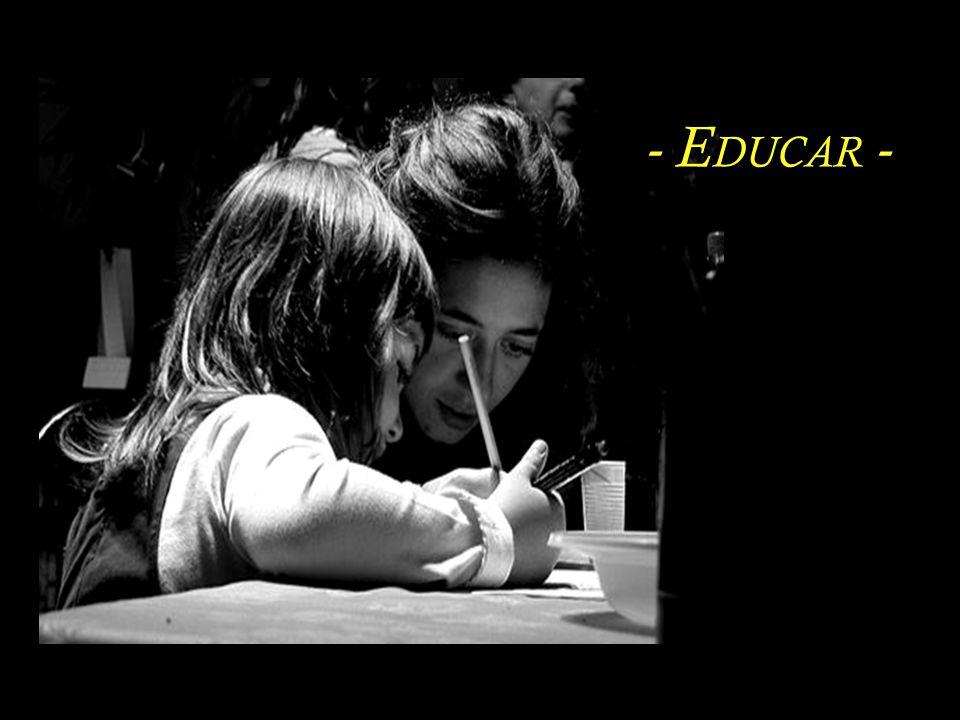 Sem a educação das sensibilidades, todas as habilidades são tolas e sem sentido. Rubem Alves