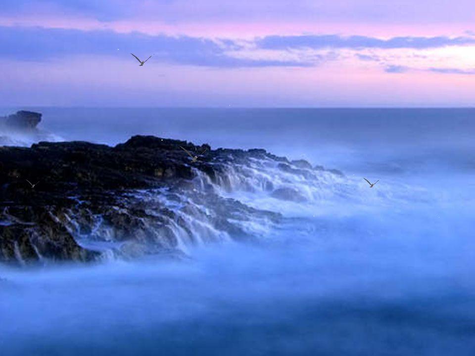 Honre a beleza e a delicadeza do espírito, que permite a todos conquistarem as suas vitórias.