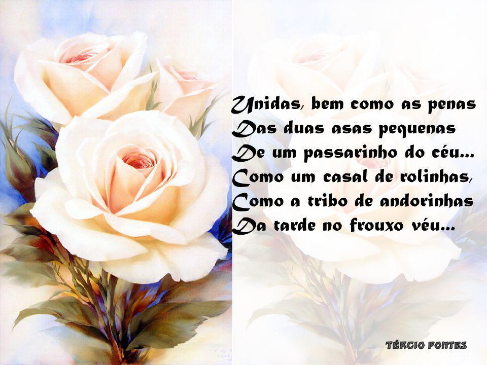São duas rosas unidas, São duas rosas nascidas Talvez no mesmo arrebol, Vivendo no mesmo galho, Da mesma gota de orvalho, Do mesmo raio de sol