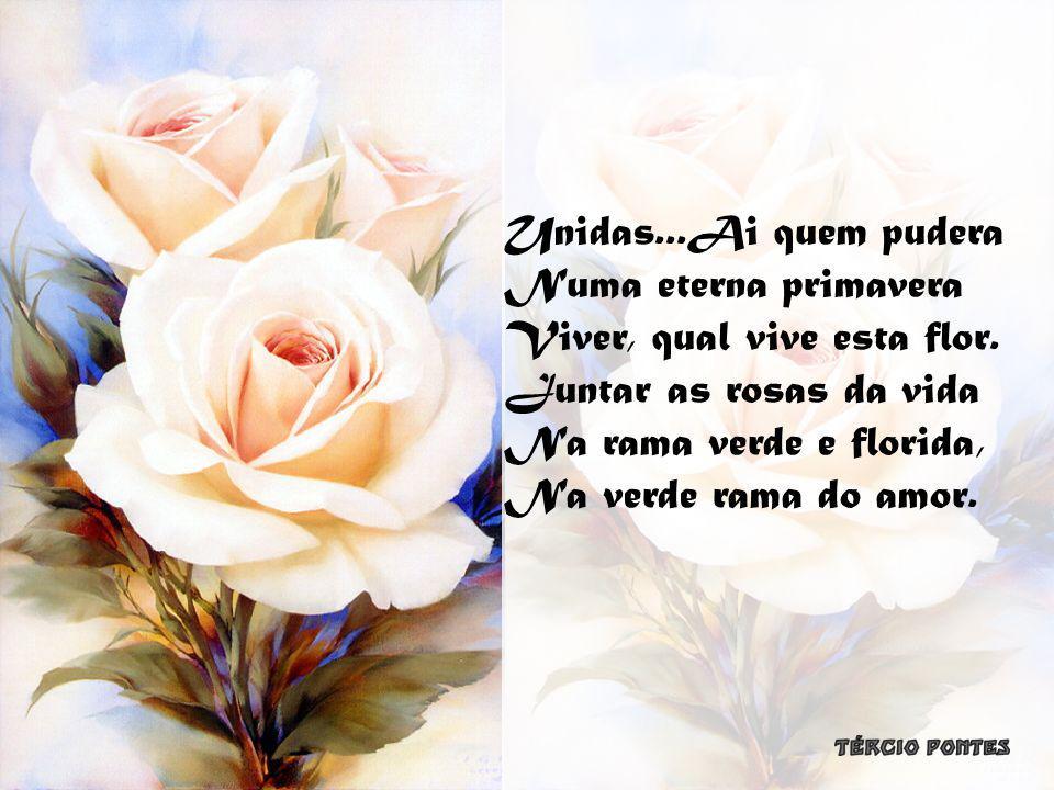 Unidas...Ai quem pudera Numa eterna primavera Viver, qual vive esta flor.