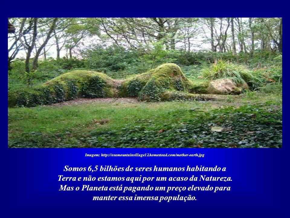 Imagem: http://osamountainvillage12.homestead.com/mother-earth.jpg A quarta Carta da Terra é caracterizada por um profundo estado de comunhão com o Pl