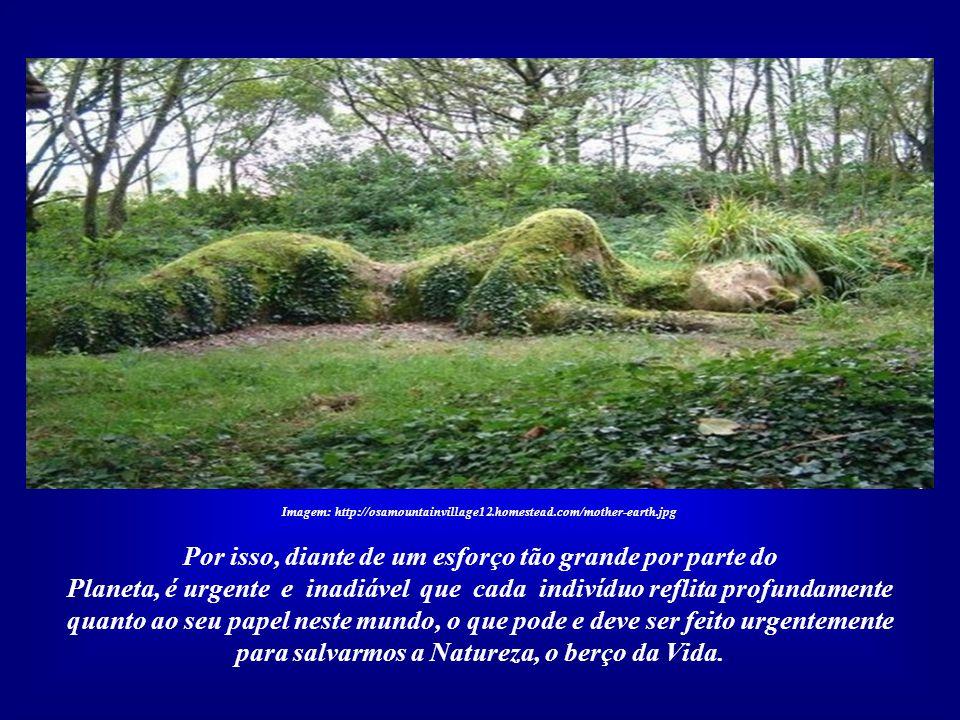 Imagem: http://osamountainvillage12.homestead.com/mother-earth.jpg Somos 6,5 bilhões de seres humanos habitando a Terra e não estamos aqui por um acas