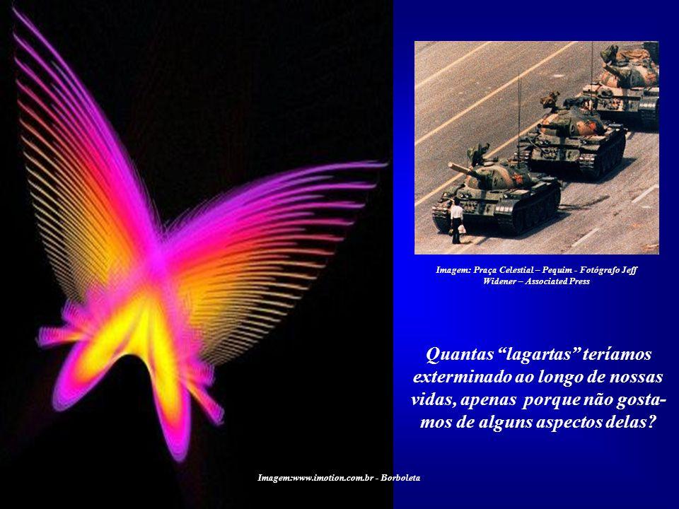 Imagem:www.imotion.com.br - Borboleta Imagem:http://flores.fotosblogue.com Ninguém consegue enxergar na lagarta a futura borboleta. Assim acontece em