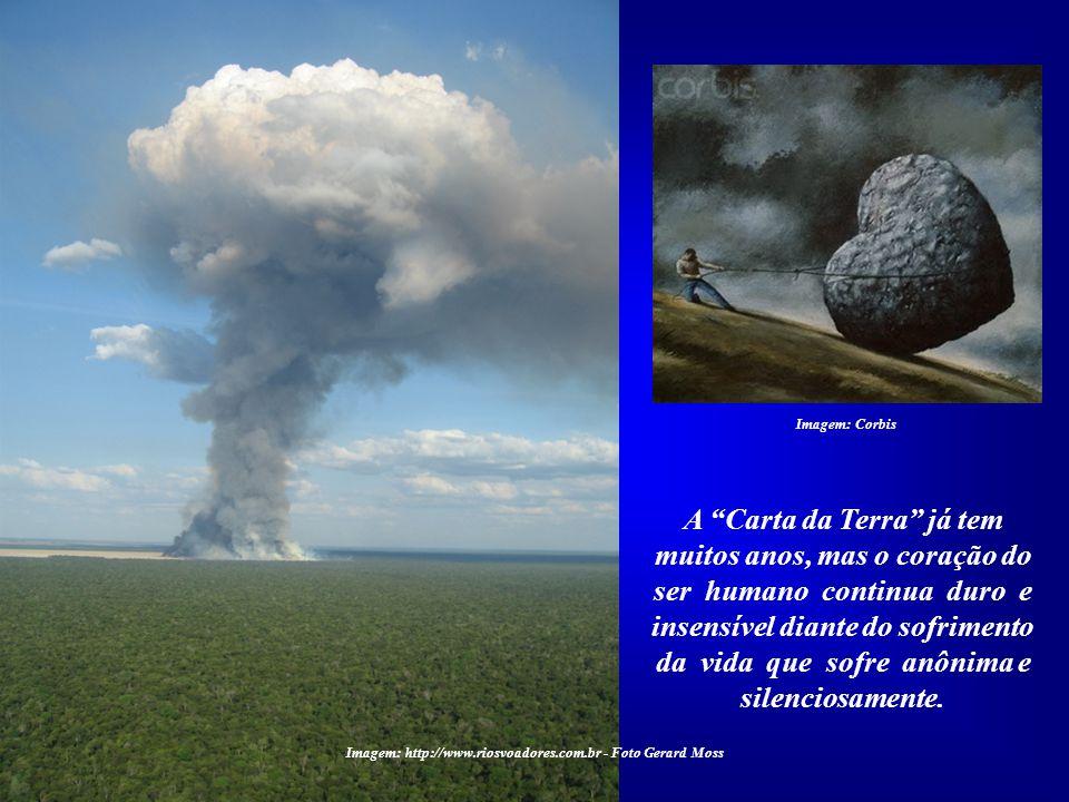 Esta foto, que mais parece uma explosão atômica, é de uma queimada em Gaúcha do Norte, MT, tirada por Ge- rard Moss durante a Expedição Rios Voadores,