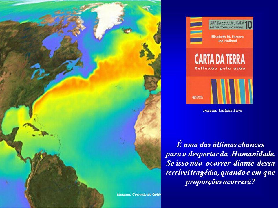 A tragédia ambiental causada pela industria petrolífe- ra no Golfo do México ameaça a vida marinha em todos os ocea- nos, consequentemente a própria H