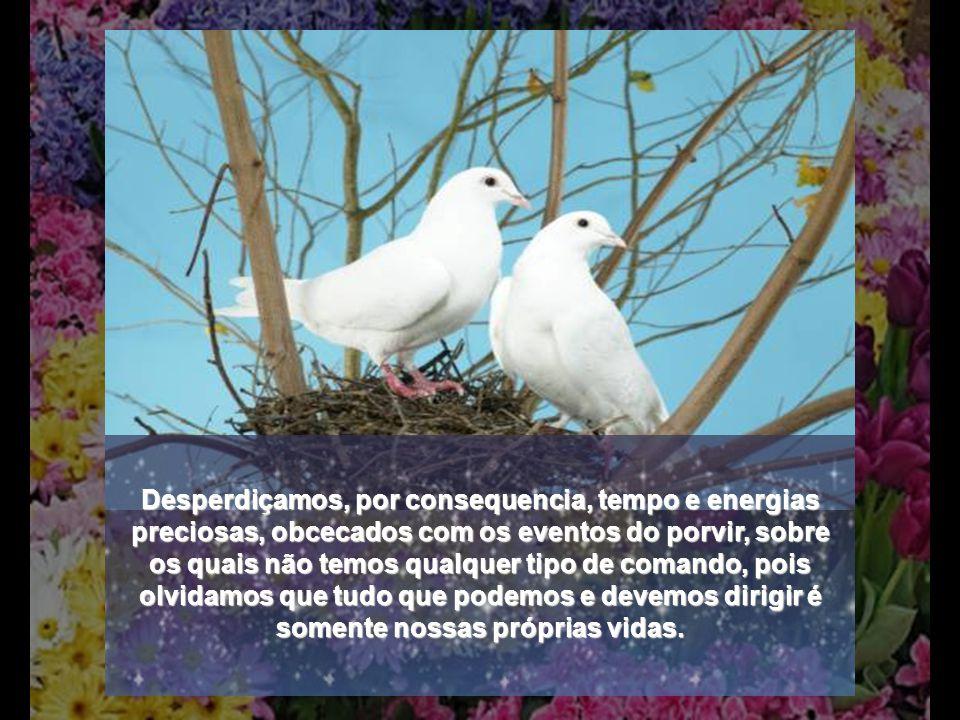 ...observai os pássaros do céu: eles não semeiam nem colhem......observai como crescem os lírios dos campos: eles não trabalham nem fiam......não estejais inquietos pelo dia de amanhã, porque o dia de amanhã cuidará de si mesmo.