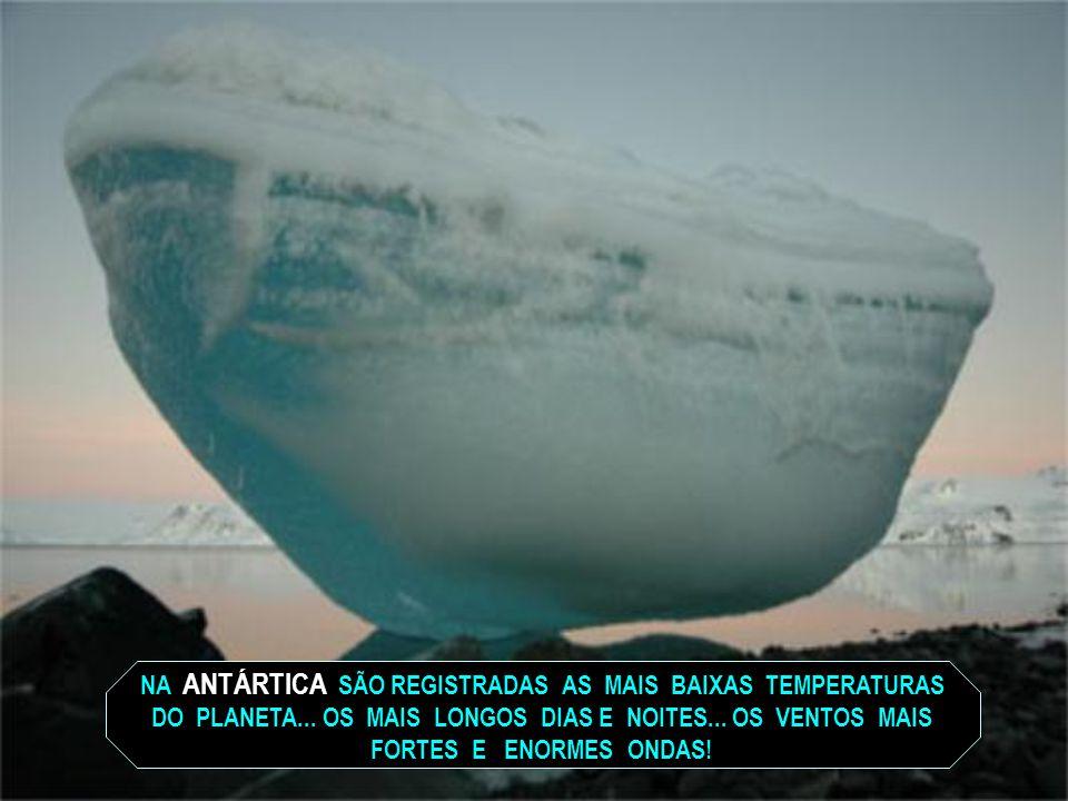 A ANTÁRTICA TEM 14 MILHÕES DE QUILÔMETROS QUADRADOS... É CERCADA PELAS ÁGUAS DOS OCEANOS PACÍFICO... ATLÂNTICO... ÍNDICO!