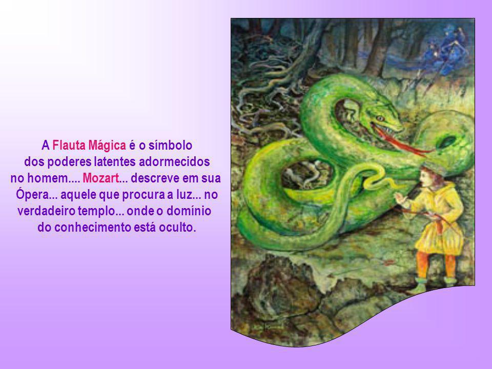 A Flauta Mágica é o símbolo dos poderes latentes adormecidos no homem....