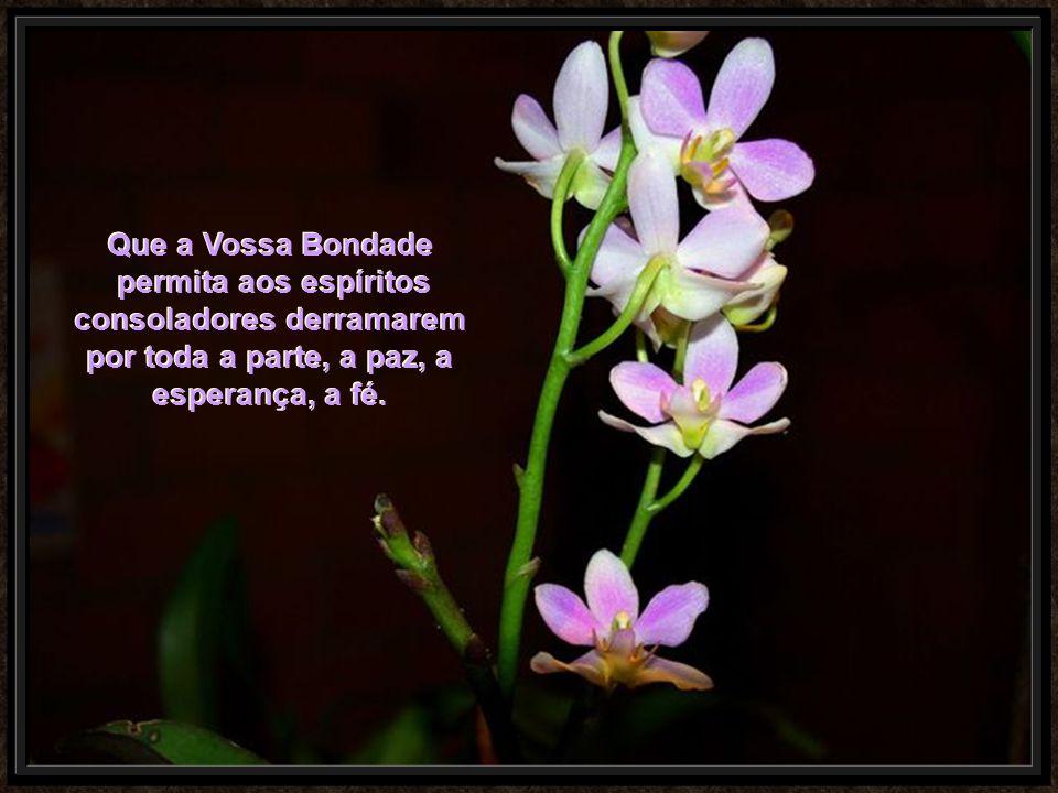 Que a Vossa Bondade permita aos espíritos consoladores derramarem por toda a parte, a paz, a esperança, a fé.