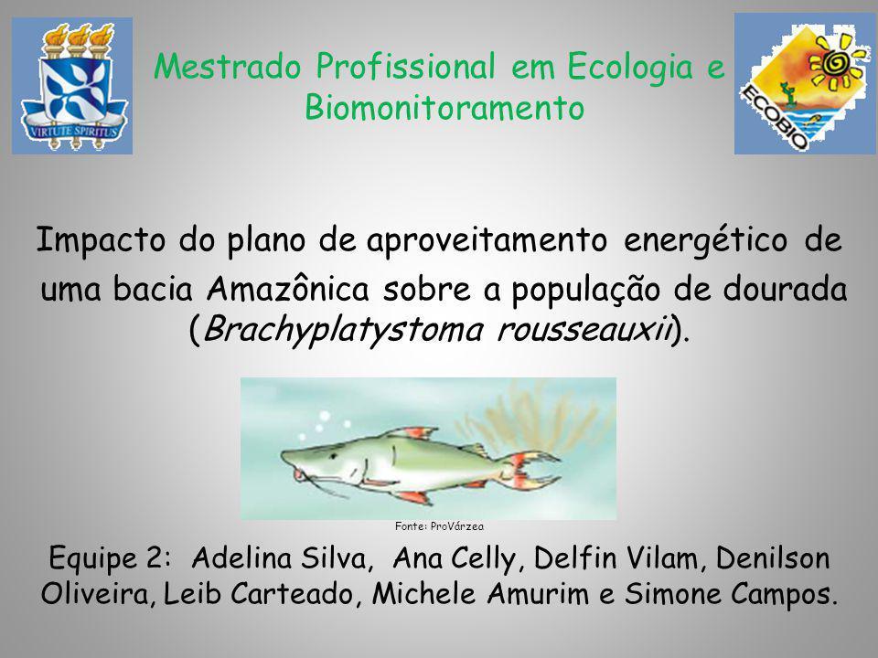Mestrado Profissional em Ecologia e Biomonitoramento Impacto do plano de aproveitamento energético de uma bacia Amazônica sobre a população de dourada (Brachyplatystoma rousseauxii).