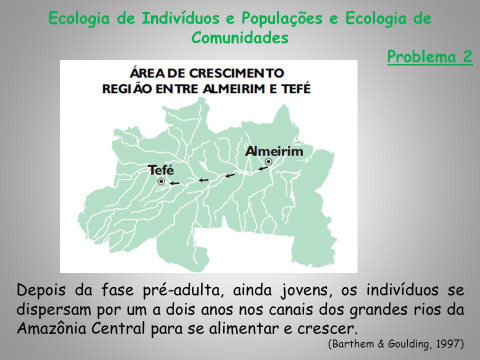 Ecologia de Indivíduos e Populações e Ecologia de Comunidades Problema 2 A dourada que viveu na Amazônia Central durante pelo menos um ano, forma cardumes e se move rio acima procurando as cabeceiras, onde desova.