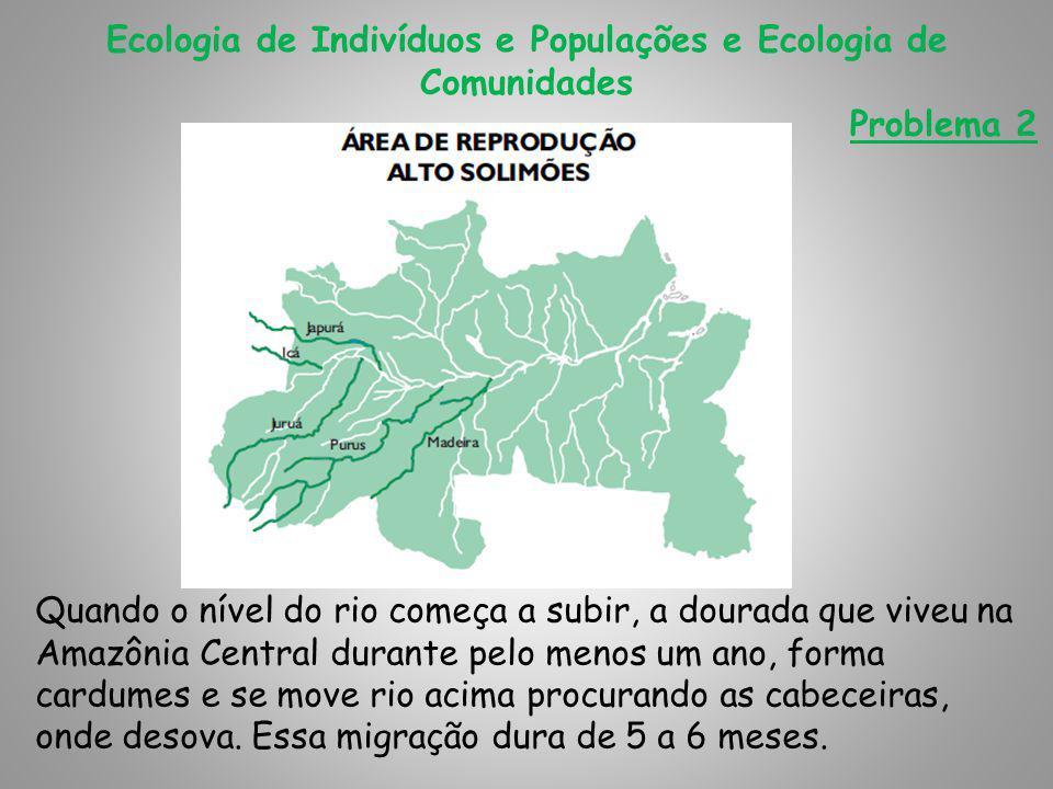 Ecologia de Indivíduos e Populações e Ecologia de Comunidades Problema 2 Quando o nível do rio começa a subir, a dourada que viveu na Amazônia Central durante pelo menos um ano, forma cardumes e se move rio acima procurando as cabeceiras, onde desova.
