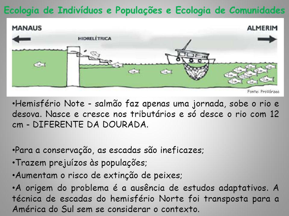 Ecologia de Indivíduos e Populações e Ecologia de Comunidades Hemisfério Note - salmão faz apenas uma jornada, sobe o rio e desova.