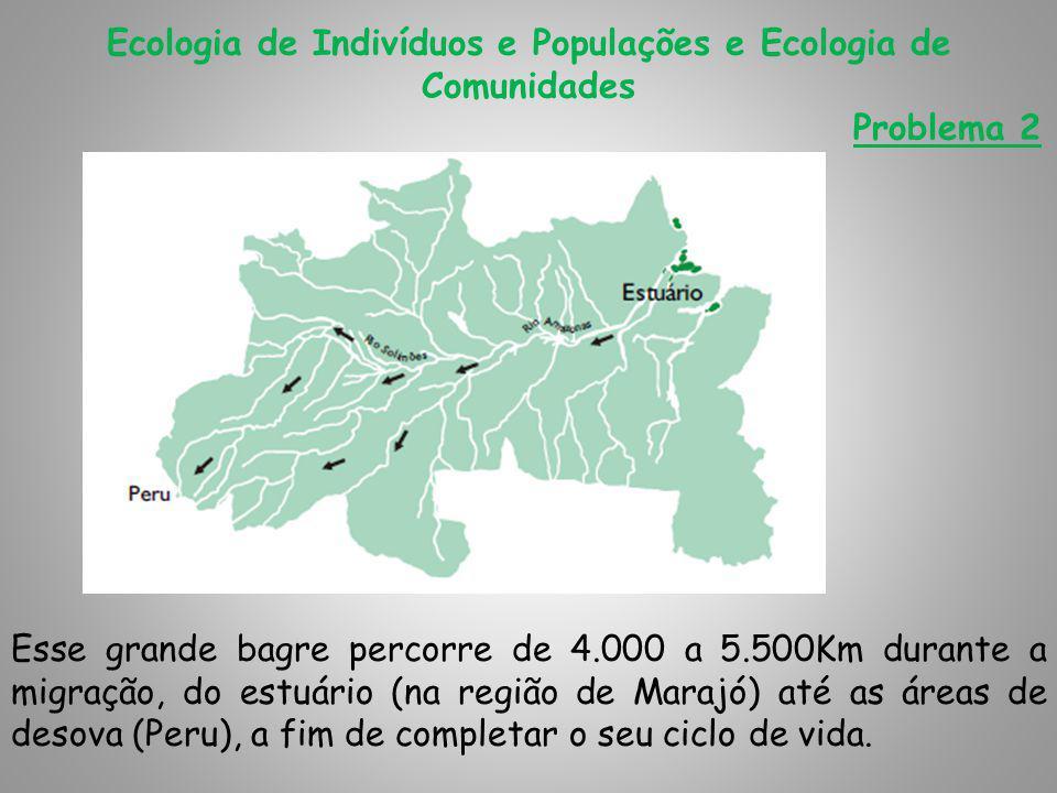 Ecologia de Indivíduos e Populações e Ecologia de Comunidades Problema 2 Esse grande bagre percorre de 4.000 a 5.500Km durante a migração, do estuário (na região de Marajó) até as áreas de desova (Peru), a fim de completar o seu ciclo de vida.