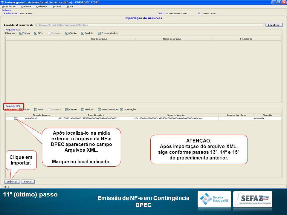 Após localizá-lo na mídia externa, o arquivo da NF-e DPEC aparecerá no campo Arquivos XML.