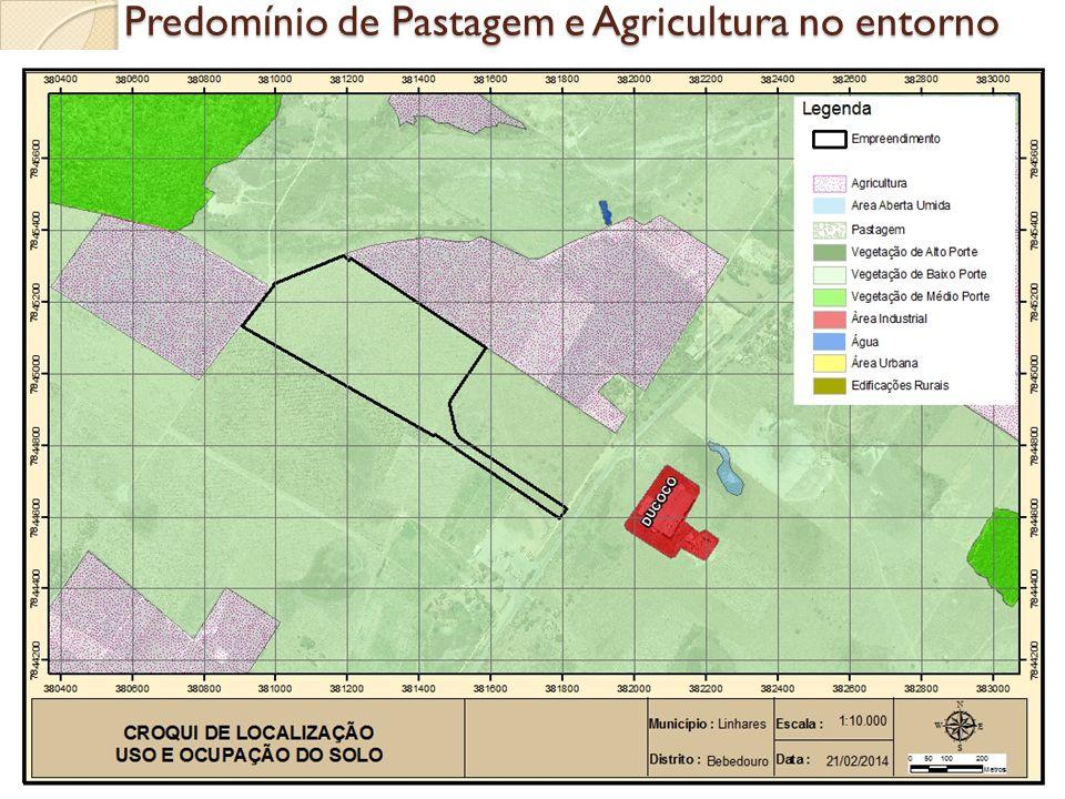 Predomínio de Pastagem e Agricultura no entorno
