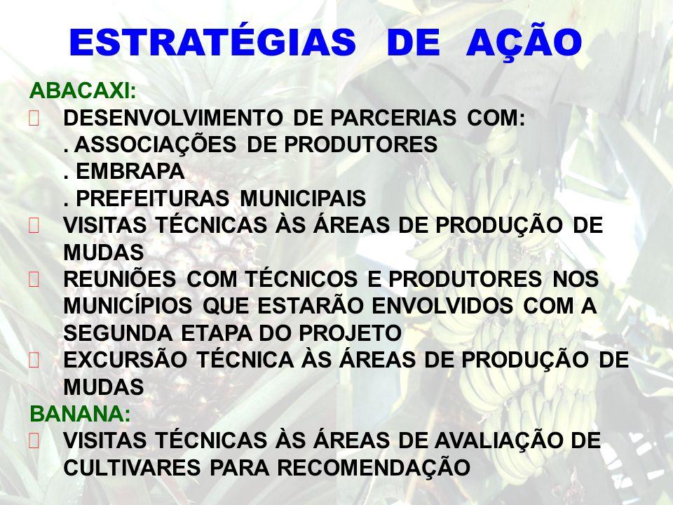 MUNICÍPIOS ENVOLVIDOS NO PROGRAMA: DISTRIBUIÇÃO DE MUDAS LINHARES SOORETAMA RIO BANANAL ITARANA BOA ESPERANÇA SERRA NOVA VENÉCIA SÃO GABRIEL DA PALHA JAGUARÉ LARANJA DA TERRA SÃO MATEUS PINHEIRO VILA VALÉRIO COLATINA SÃO DOMINGOS DO NORTE ÁGUIA BRANCA